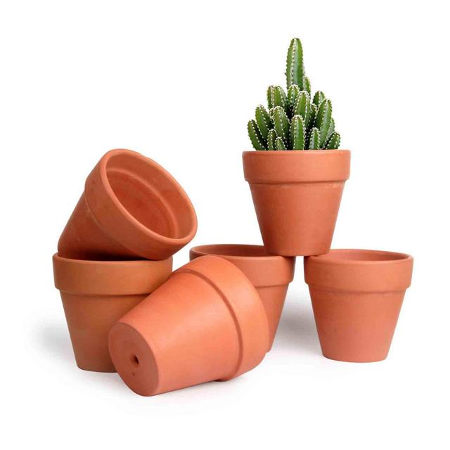 107cm Pianta Grassa Vasi in Terracotta Set di 6 per Piante in Miniatura