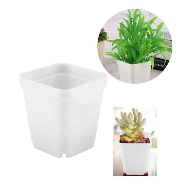 20 vasi in plastica per piante grasse mini vasetti quadrati perfetti per giardiniere