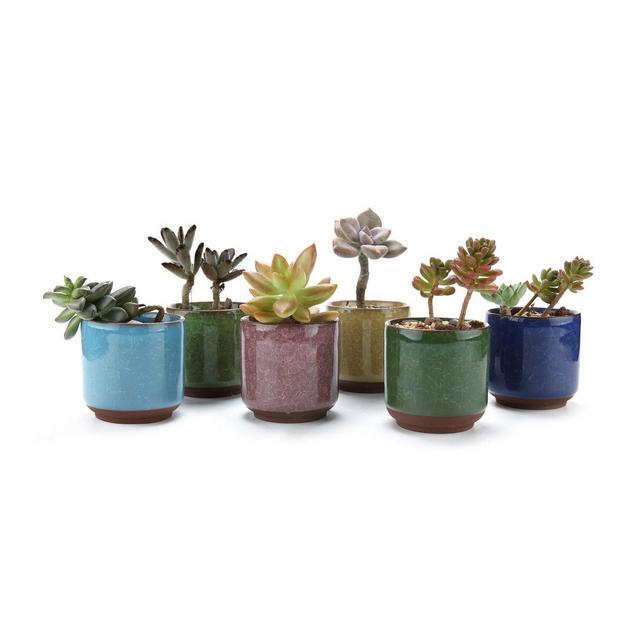 65CM Set of 6 Ice Crack Zisha Raised Serial Ceramica Vaso di Fiori Pianta Succulente Cactus Vaso di Fiori Giardino i vasi di Fiori vasi di Piante