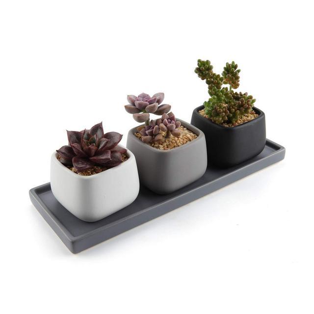 7CM Ceramica Moderno Mini Piazza Succulento VasoCactus Vasi di Fiori Contenitore Porta Porcella Piante con Vassoio Rettangolare Colore Pieno Confezione da 3