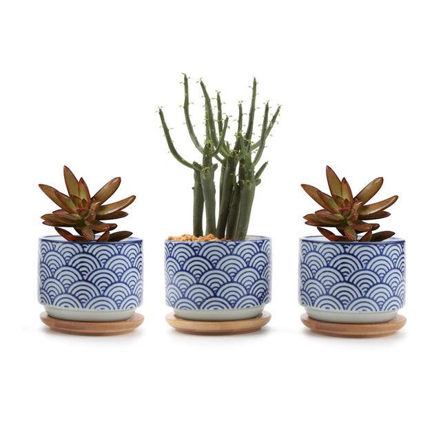 8cm Pianta Grassa Vasi Rotandi di Stile Giapponese in Ceramica con Piattini Set di 3 per Piante in Miniatura