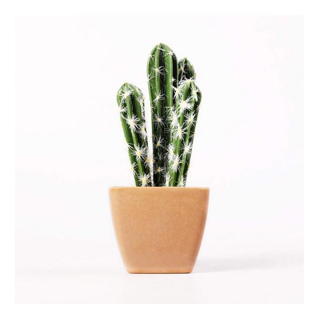 Cactus Finto in Plastica Decorativa #3 Pianta Succulenta Artificiale con Vaso Confezione da 1