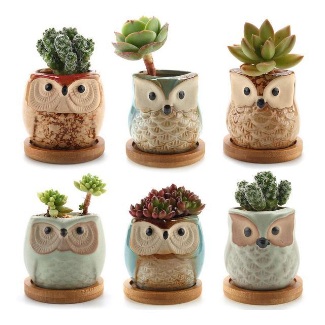 ComSaf Vaso per Pianta Grassa Vaso di Piante 65CM Gufo in Ceramica Smalto Collezione con Vassoio di bambù Set di 6 Fioriere di Cactus Contenitori Vasi di Fiori Decorativo Desktop Davanzale