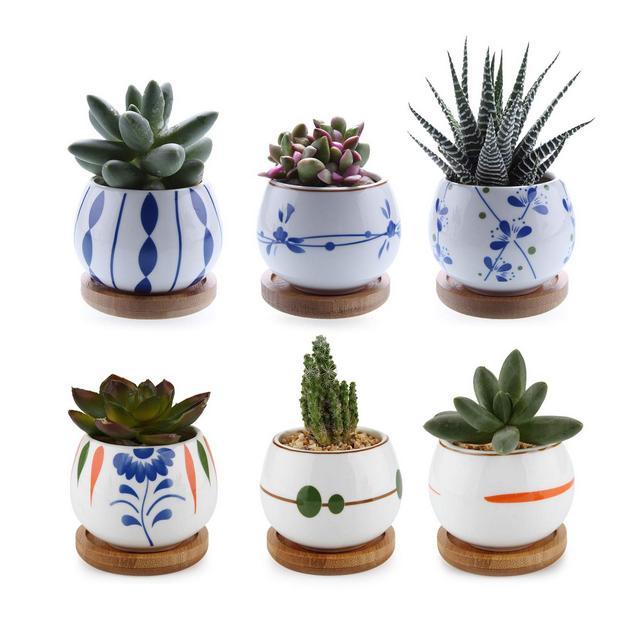 ComSaf Vaso per Pianta Grassa Vaso di Piante con Vassoio di bambù Bianco 7CM Ceramica Set di 6 Fioriere di Cactus Contenitori Vasi di Fiori Decorativo del Desktop Davanzale Bonsai