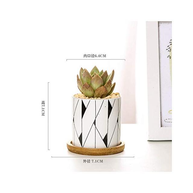 Geometria Ceramica Stile succulenta Serial fioriera Vaso Cactus Bonsai Pot Vaso di Fiori Contenitore Decorazione del Giardino Type05