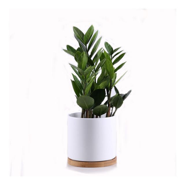 Gleasyshop vasi Moderni in Ceramica con Base in bambù per Uso Interno o Esterno Grande