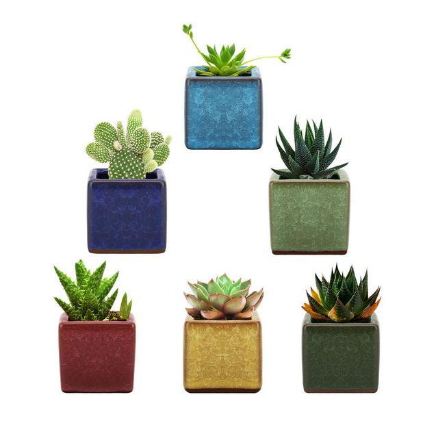 Lewondr Vasi da fiori Vasi in Ceramica 6 Pezzi Vasi da Giardino Forca Quadrata con Foro Centrale Dreggio Acqua Dim Accessori Giardino Vasi per Piante Fiori Piante Balcone Casa Multicolori
