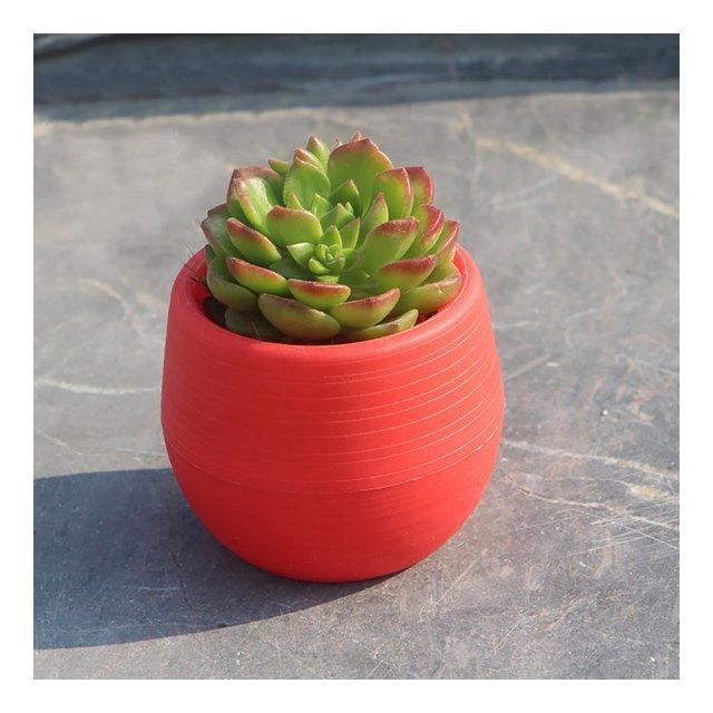 MOOUK plastica pianta vaso di fiori colorati rotonda casa vaso per piante piantine nursery vaso per piante grasse per casa ufficio giardino decorazione Wine Red Taglia libera