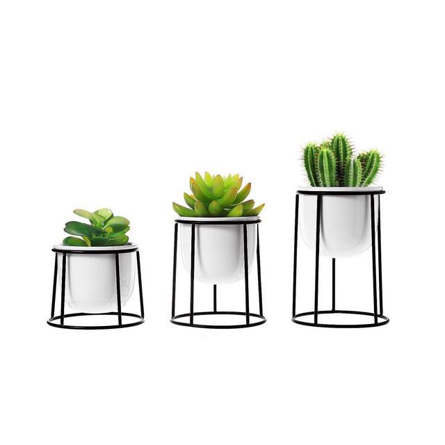 Pianta Grassa Vasi Bianci in Ceramica con Supporto in Ferro Set di 3 per Piante in Miniatura