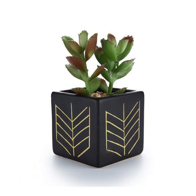 Pianta Grassa Vasi in Ceramica Set di 1 per Piante in Miniatura