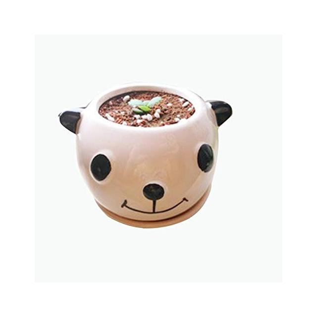 SANHOC Ceramica Creativa Flowerpot a Cactus succulente fioriera Forma Animale del Fumetto Giardino Vasi Fioriere Bonsai Escursioni Flower Pot Bianco