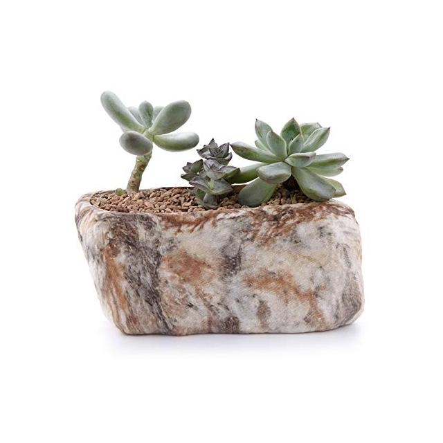 SANHOC Distinctive Pietra Mold Succulente Planter Resi vegetale Planter Vaso di Fiori Giardiggio Resi Bonsai Escursioni Flower Pot Figura Decor type02