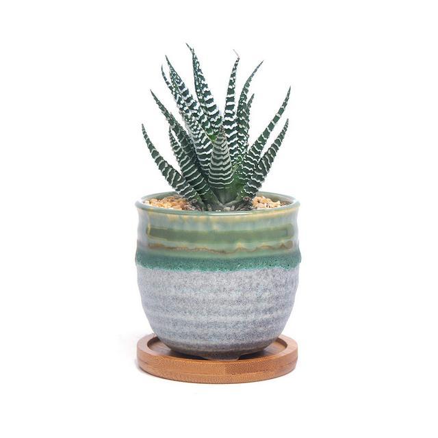 SONIRY Ceramica Succulente Planter Vaso con bambù Vassoio Estate Trio Domestica Verde davanzale Bonsai Decoration