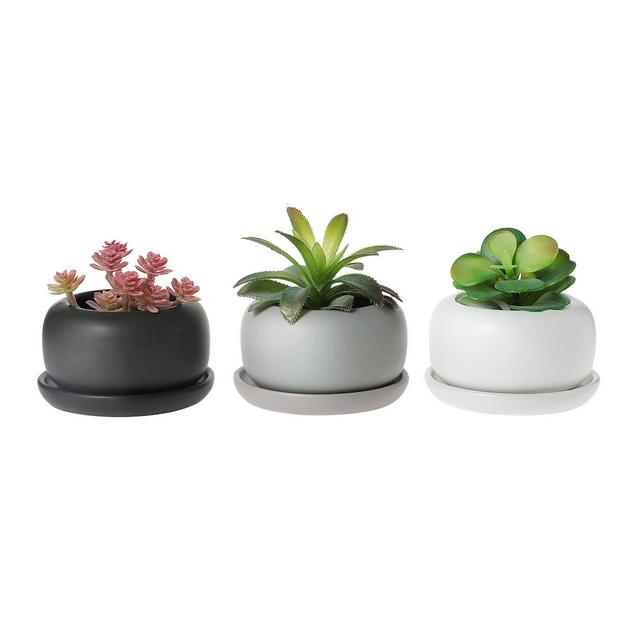 Vasetti per Piantine Ceramica con Vassoio Set di 3 Piccola Vasi in Ceramica per Piante Grasse da Interno Vasi Cactus per Succulente Piccoli