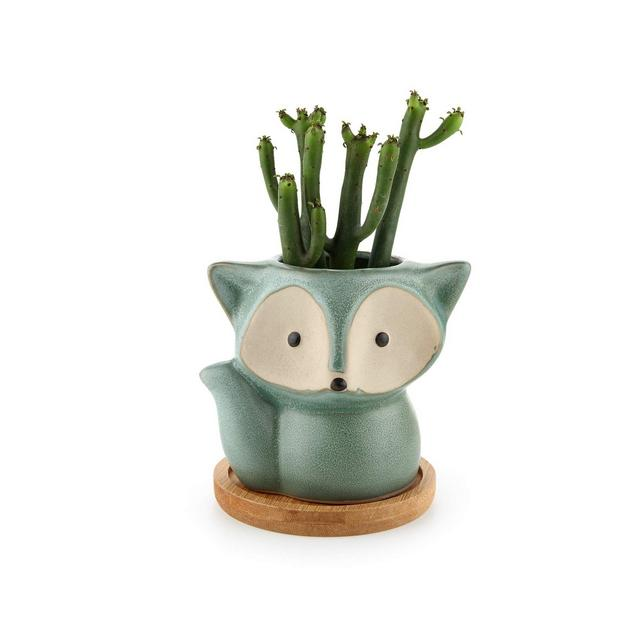 Vasetti per Piantine Ceramica con Vassoio di bambù Set di 1 Piccola Vasi in Ceramica per Piante Grasse da Interno Volpe Vasi Cactus per Succulente Piccoli