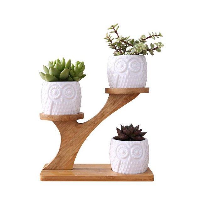 Vaso per Fiori per Piante grasse Cactus Piccolo Cactus scaffale per Fiori in Legno Supporto per Piante Porta Piante per Cactus Piante in Vaso e Piante grasse 1 ripiano 3 vasi di Fiori
