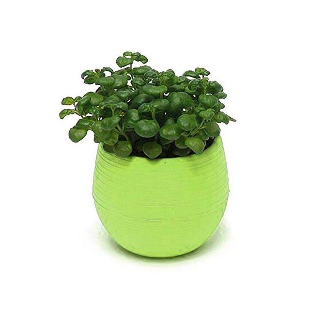 Westeng mini fioriera per piante grasse in resi decorazione per casa e ufficio confezione da 1 green taglia unica
