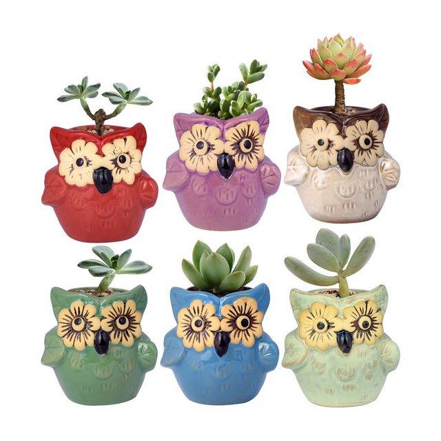 Wituse Piantine da ufficio vasetti Simpatico vaso per piante a forma di animale con occhi vaso per cactus 6 Colors misura