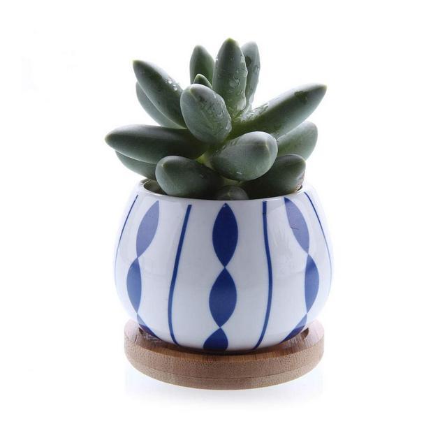 XIGE Pianta grassa in Ceramica Vaso per Piante Cactus Vaso per Fiori Vaso per Fiori Bonsai Fioriera con Vassoio da Giardino in bambùtype01